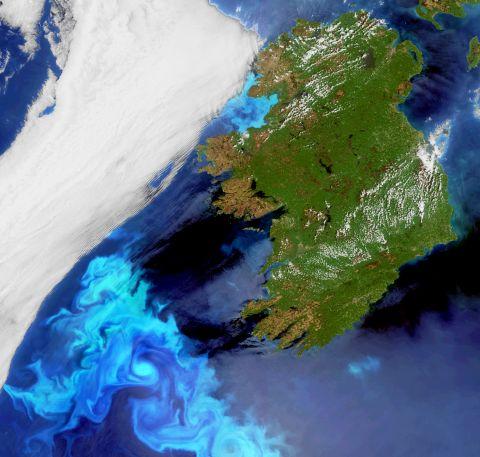 IrelandBloom_20100523_H1