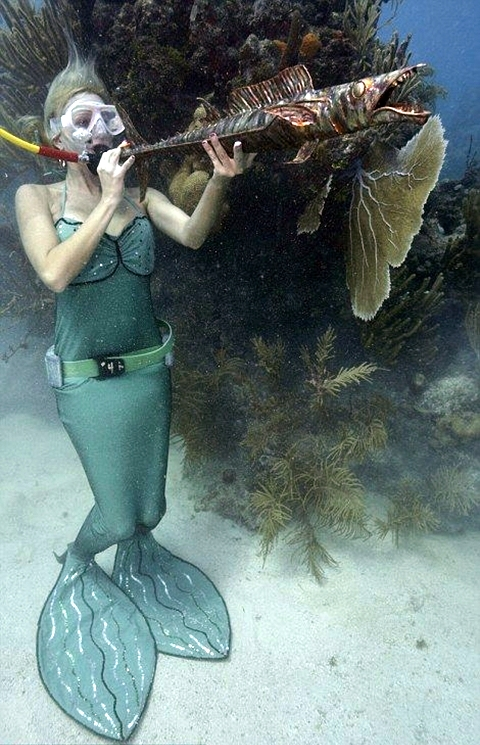 Underwater_02