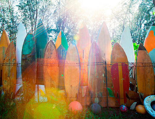 Boards05