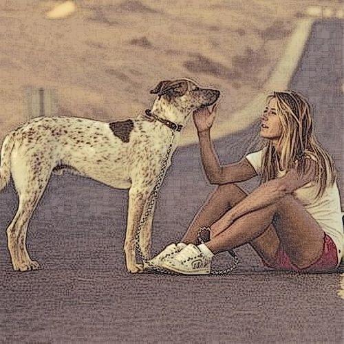 Luckydog