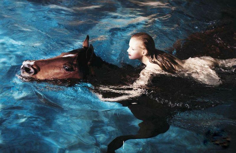 Mermaidandhorse