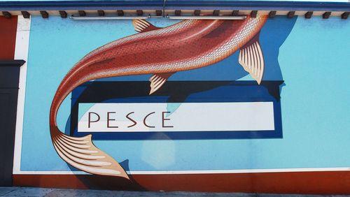 Pesce4