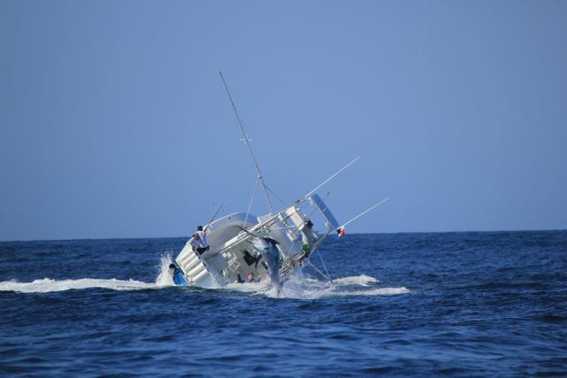 Marlin 06