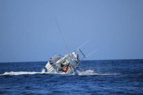 Marlin 05