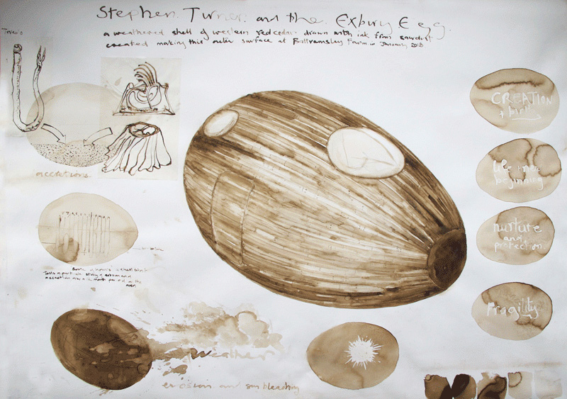 Exbury egg drawing 02