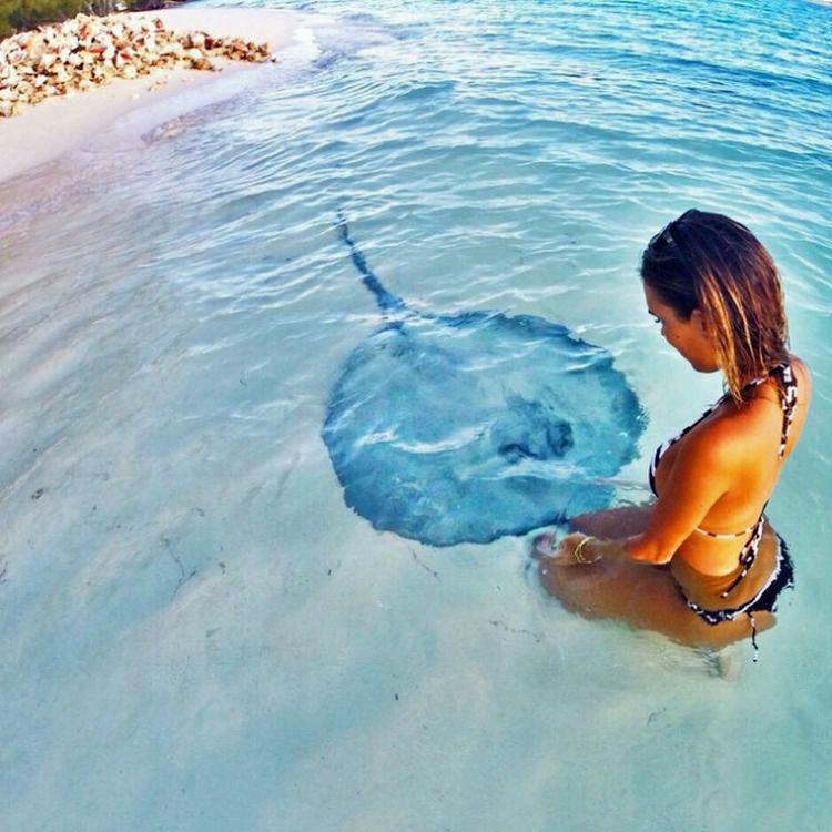Jaimie-Sullivan-fish-on-fridays