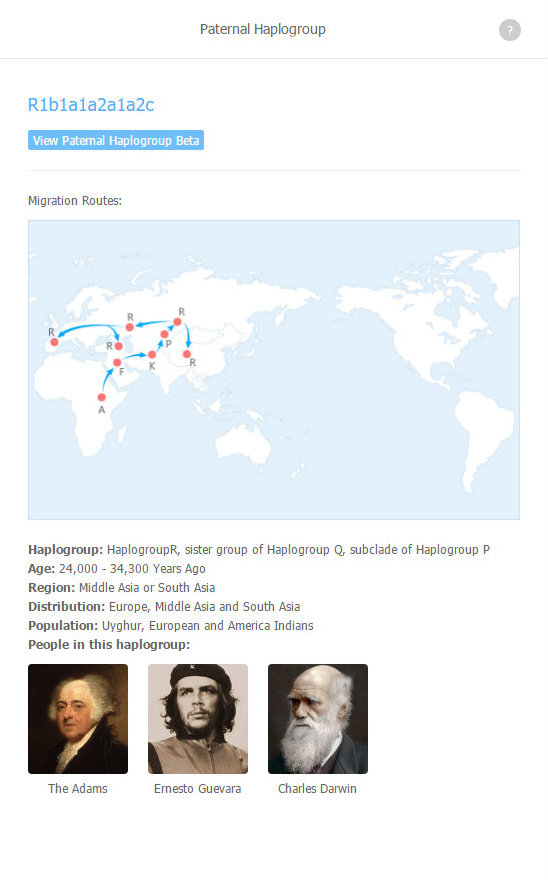 Male haplogroup